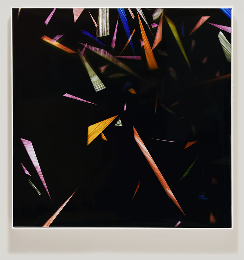 color photogram titled: Acquiescent Convention from the series Precariously Bright