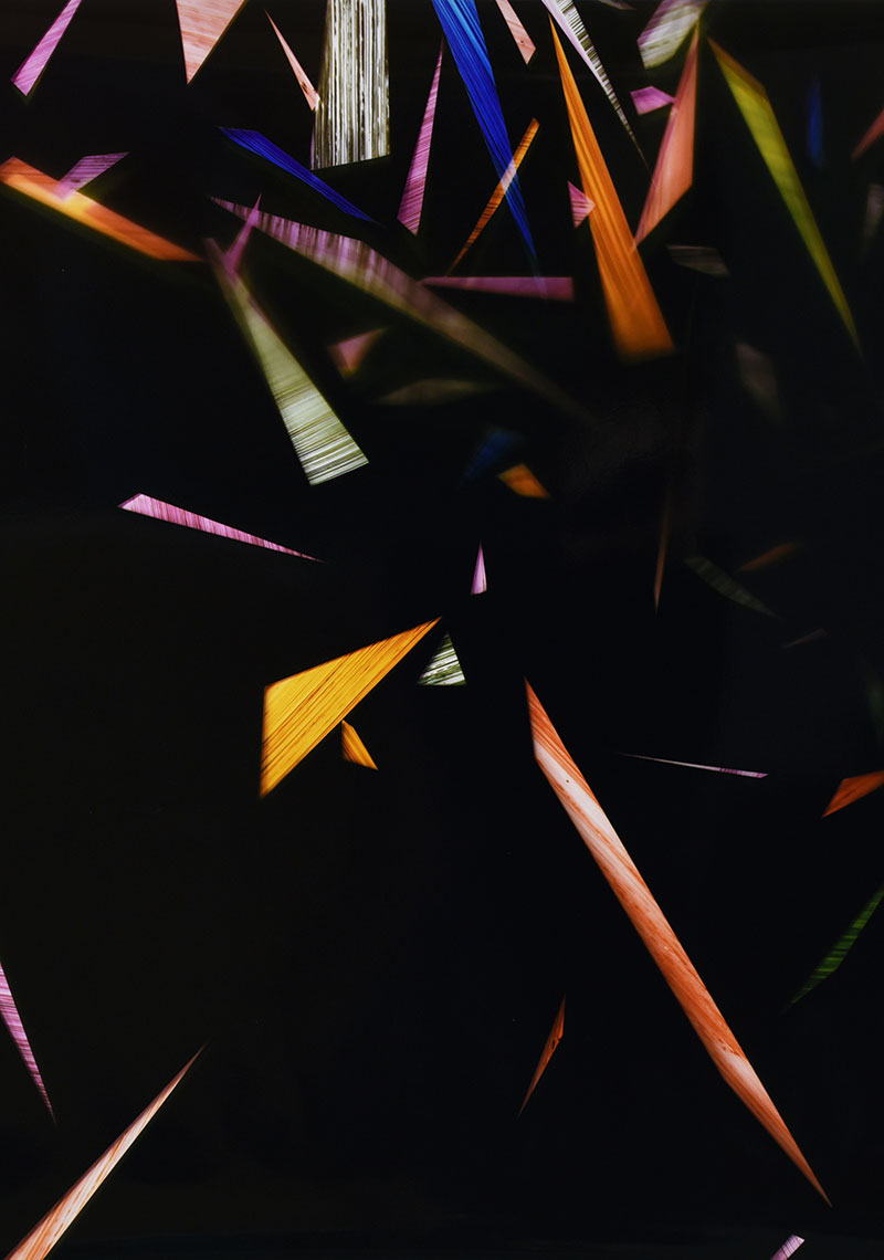 close-up detail of color photogram titled: Acquiescent Convention from the series Precariously Bright