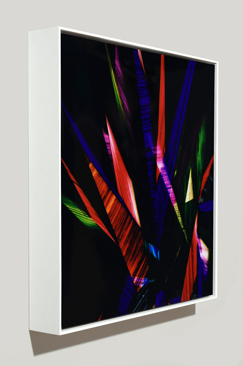 Side view of color photogram titled: Benign Incontinence