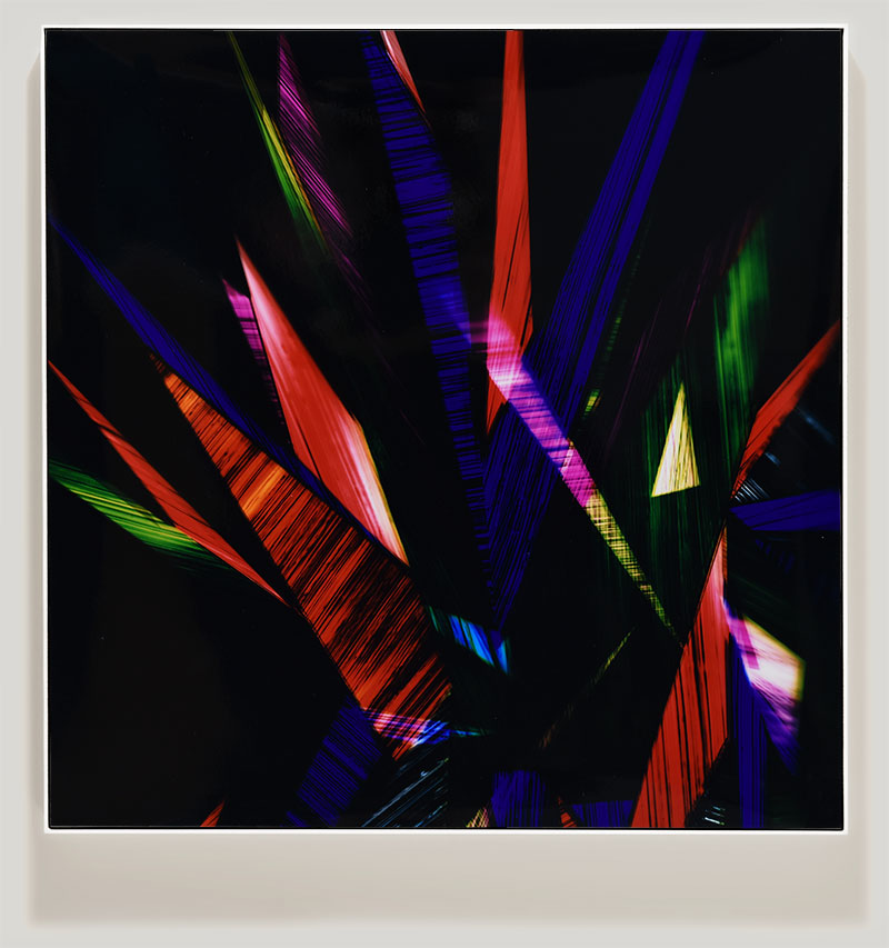 color photogram titled: Benign Incontinence
