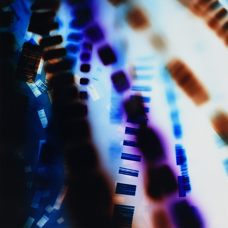 Color Photogram, titled Conditional Probability by lighting artist Richard Slechta