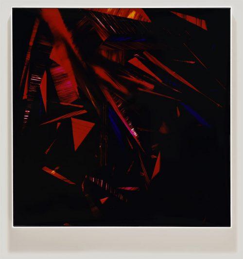 color photogram titled: Crimson Belligerence