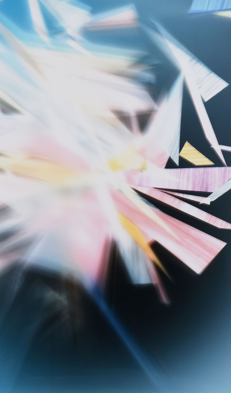 close up details of color photogram titled: Developmental Flaws