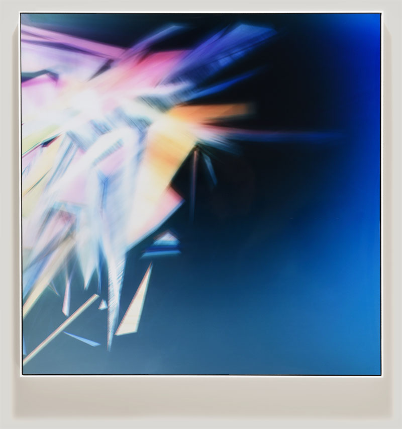 Framed color photogram titled: Garden Variety Singularity