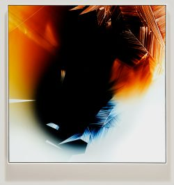 Framed color photogram titled: Gifted Expiration from the Inherent Trajectories series