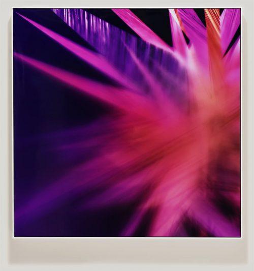 Framed color photogram titled: Involuntary Swooning