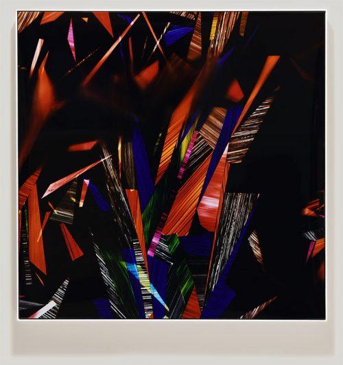 Framed color photogram titled: New Allegiance