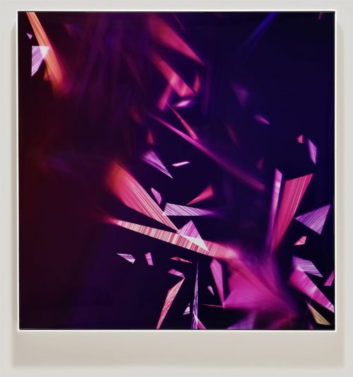 Color photogram titled: Nightingale Spectator