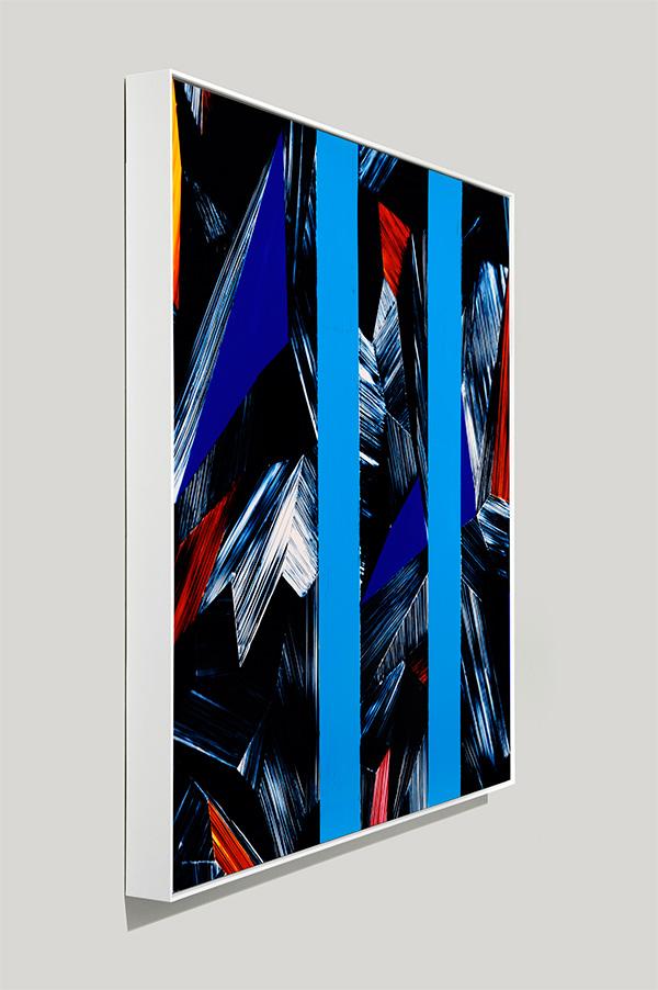 framed color photogram, roused integration