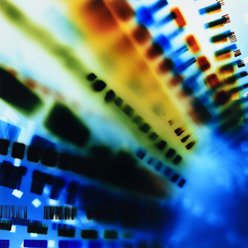 Color Photogram, titled Semi-Direct Convergence by lighting artist richard slechta by lighting artist Richard Slechta