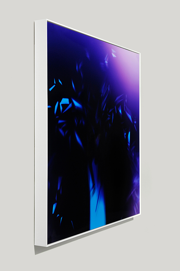 Angle-view of framed color photogram titled: Splinter Cell from the Cascades Series