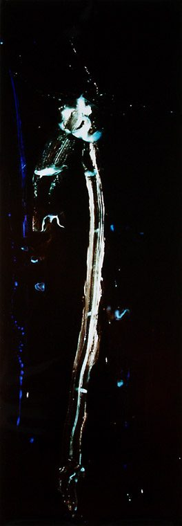 color photogram titled: Previously Left Behind, by artist Richard Slechta