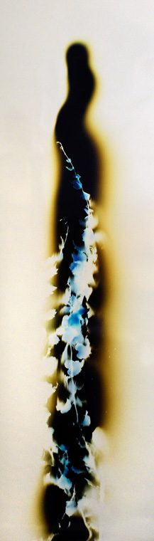 color photogram titled: The Smell of Obedience By artist, Richard Slechta.